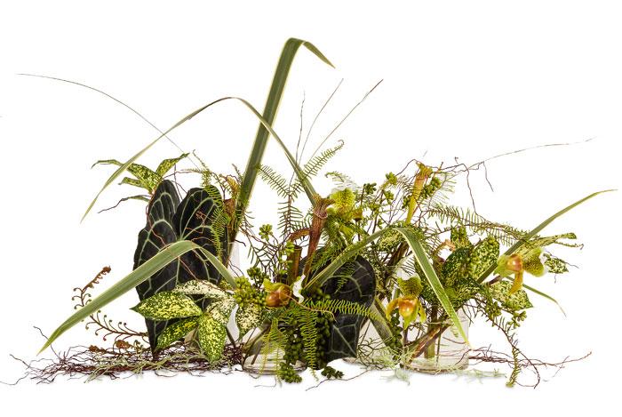 Composicion floral monocromática
