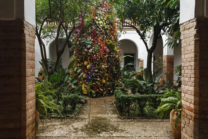 Flora 2017 - Antena de Flores Cosmos