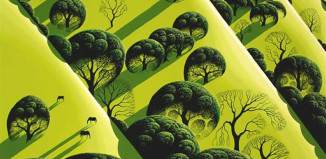 Live oak contry