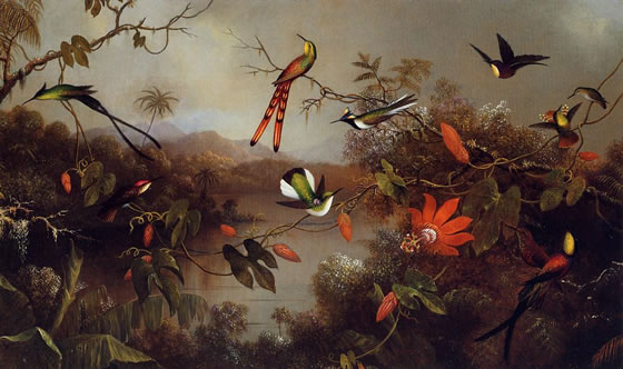 Martin-Johnson-Heade2