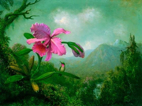 Orquidea-y-colibri