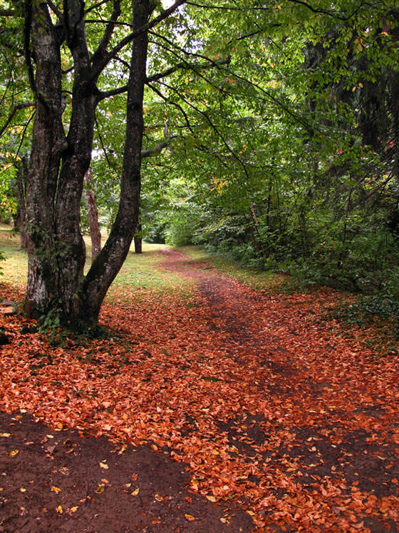 Plitvice en otoño