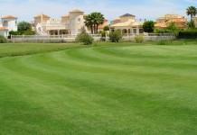Fertilización en áreas verdes