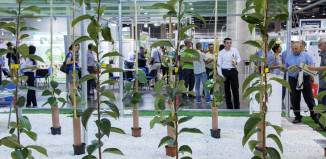 Agricultura Ecológica Urbana y Periurbana