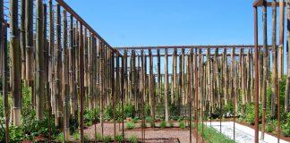 Allariz 2015, 'Musicalidad de bambú'