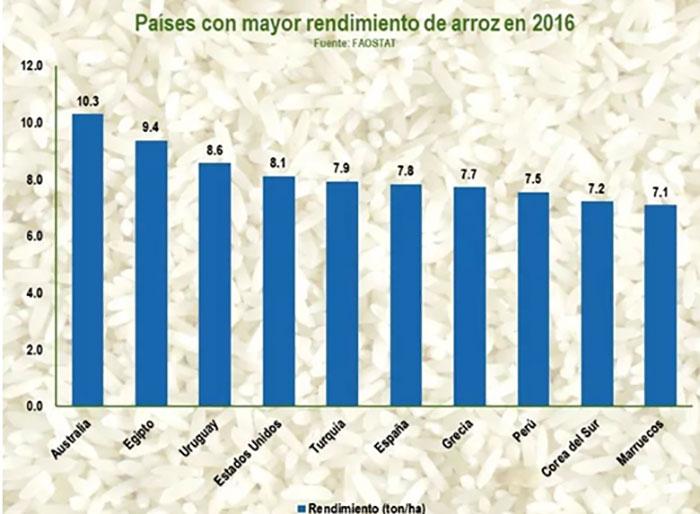 Bioestimulantes agrícolas para el cultivo de arroz