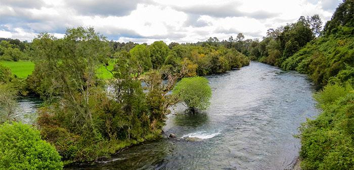 Cauces de ríos