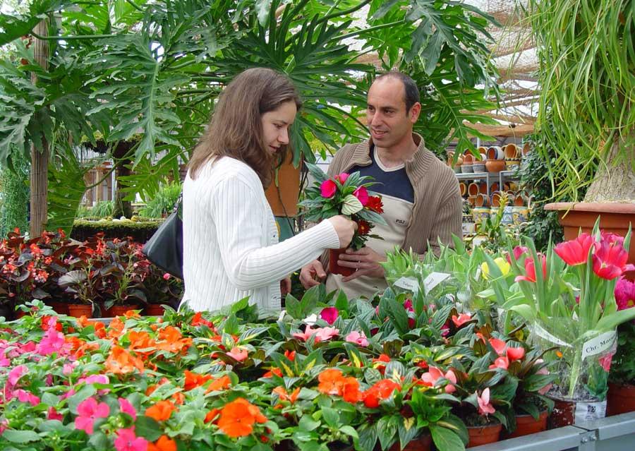 Revista de jardiner a for Articulos para jardineria
