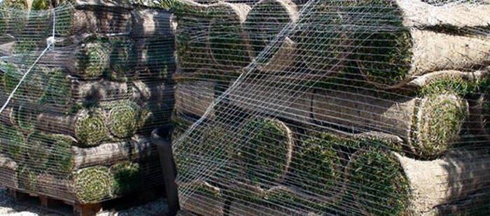 El césped en tepe en España