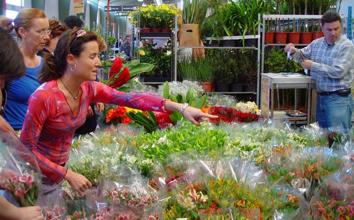 Comercio de flores