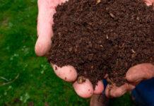Cómo hacer compost de jardín