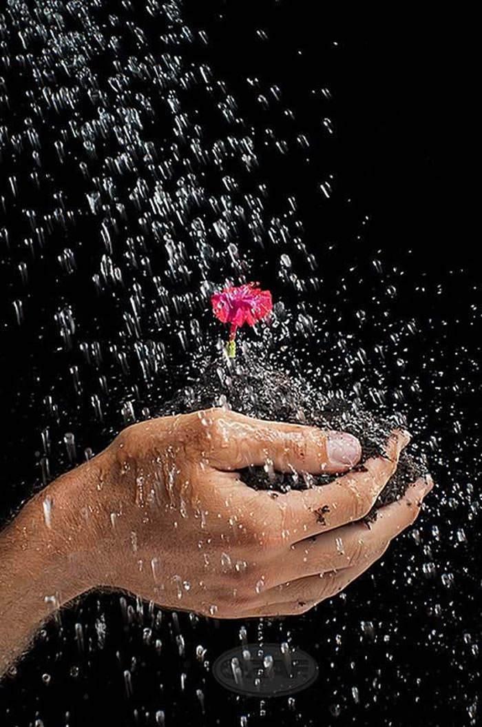 concurso atrapa la lluvia