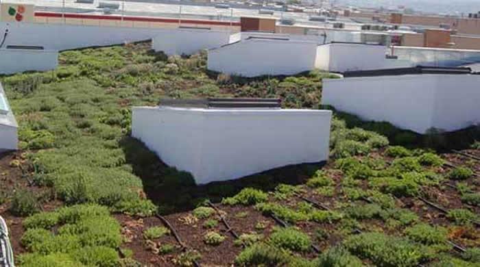 cubiertas vegetadas