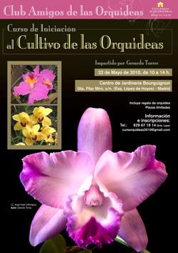 Curso de iniciación al cultivo de las orquídeas