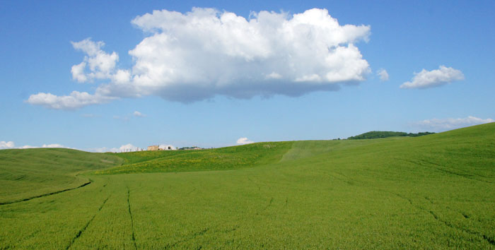 Fabricantes de fertilizantes para una agricultura ecológica