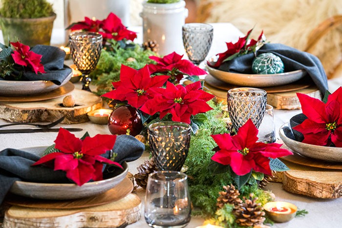 Decoraciones de mesa de estilo natural clásico con poinsettias