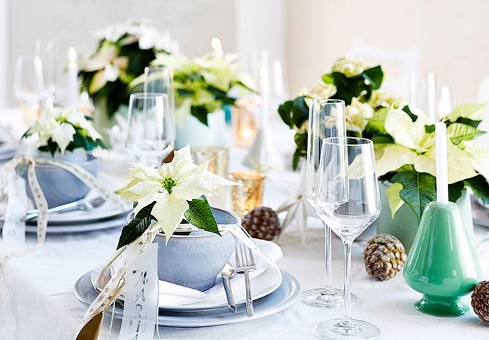 Decoraciones de mesa de estilo elegante con poinsettias