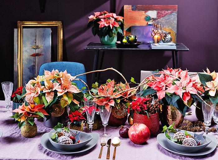 Decoraciones de mesa de estilo opulento con poinsettias