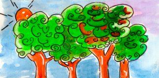Dibujo de arboles hoja perenne 1