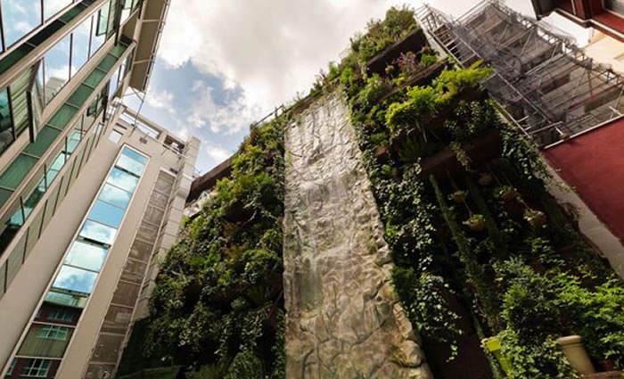 El jard n vertical m s grande de espa a - El jardin vertical ...