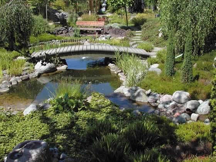 estanque en el jardin