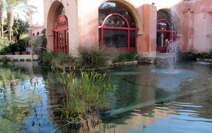 Estanques piscina