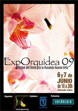 ExpOrquídea 09 es la exposición donde se muestran las orquídeas más curiosas, raras y bellas de todo el mundo