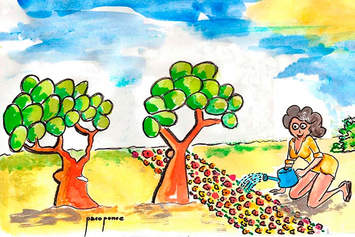 Fertilizantes para plantas 1