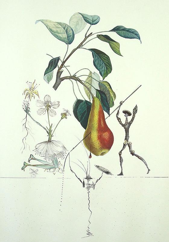 Flor Dalí