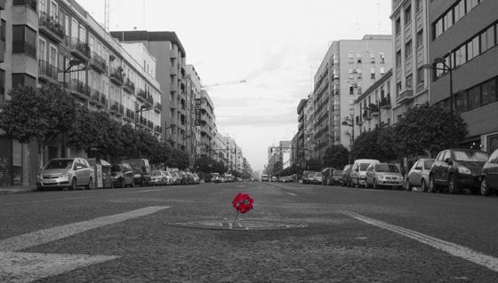 Flor en el asfalto