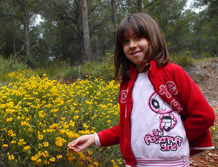 Flores de Hippocrepis valentina