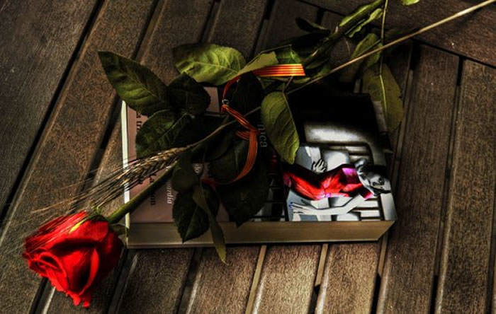 flores de rosas en sant jordi