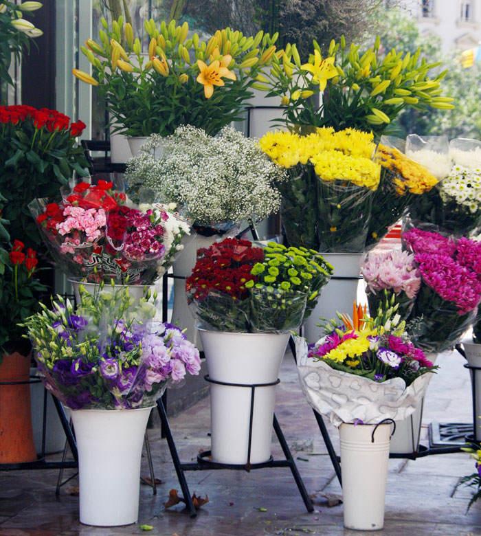 Comprar flores para Todos los Santos
