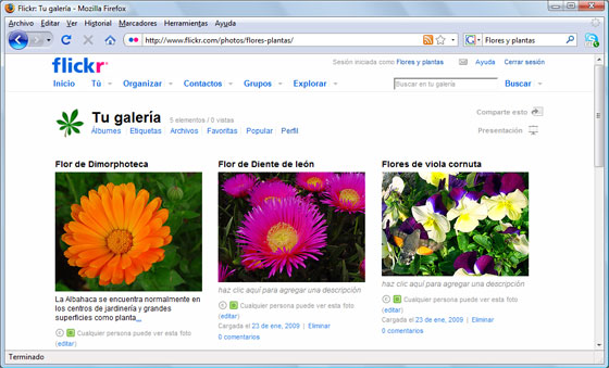 Nuestra galería de fotografías de flores, plantas y jardines en Flickr