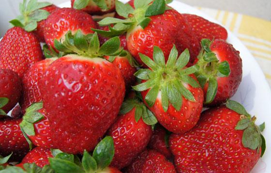 Variedades de Fresas para el huerto urbano