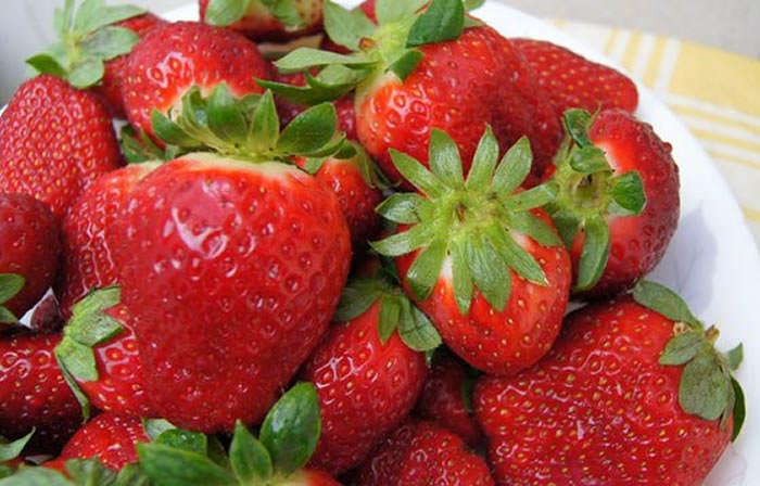 fresas del huerto urbano