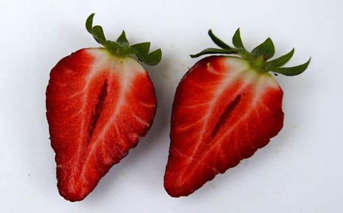 Frutos de fresas 21