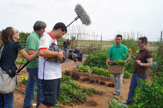 Huerto urbano de Fernando por televisión