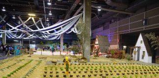 El huerto urbano en Expojove Valencia