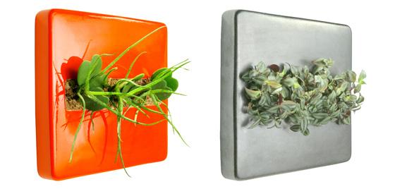 Jardines verticales cuidado de plantas - Como hacer un jardin vertical de interior ...