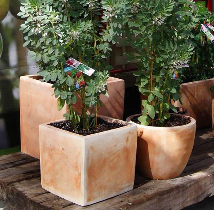 jardineras para huerto urbano
