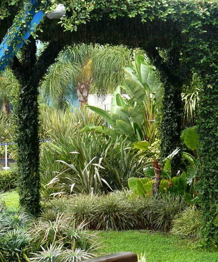 jardines parque oceanografico 2