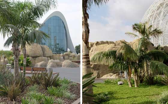 Jardines del Parque Oceanográfico