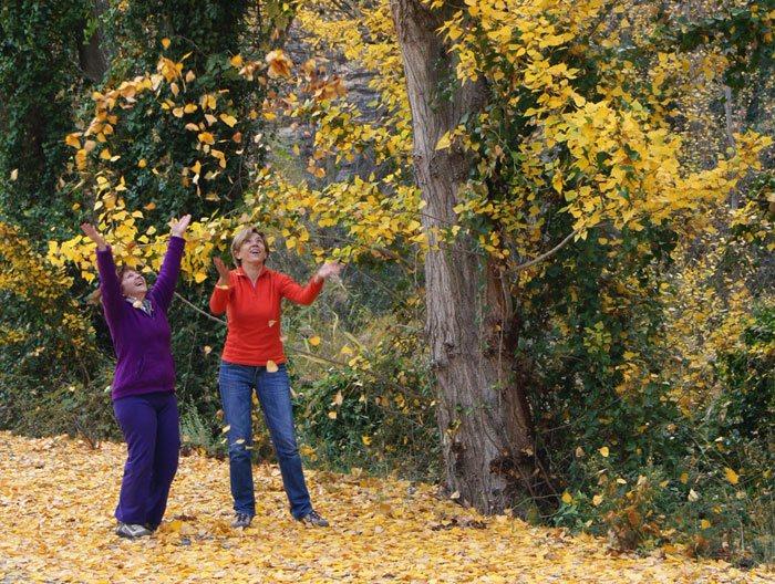 Por qué las hojas cambian de color en otoño