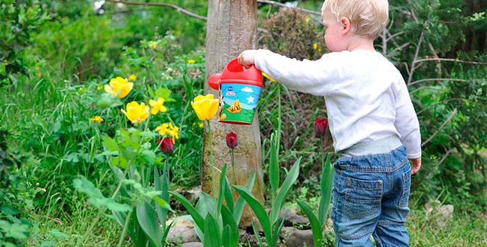 La cultura del riego en el jardín