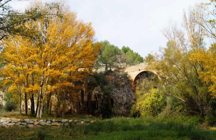 La Puente Alta