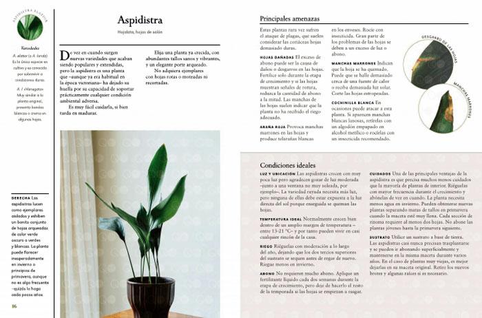 Libro de William Davidson, Plantas de Interior