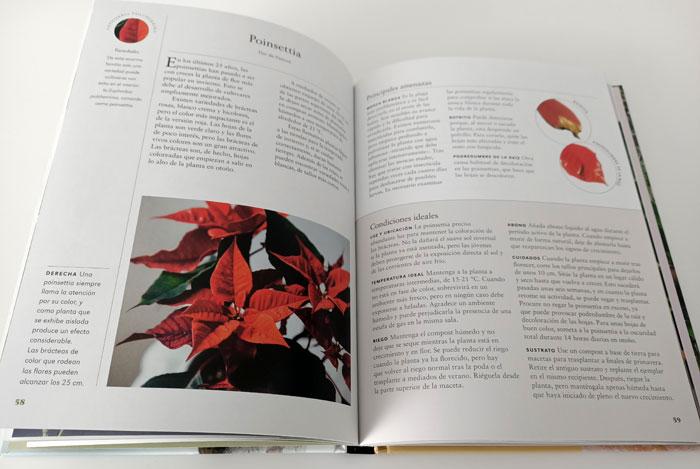Plantas de Interior, libro de William Davidson