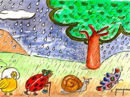 Lluvia jardin 1