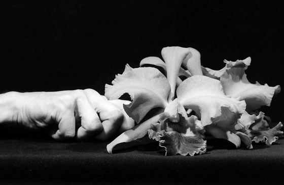 mapplethorpe-2-1